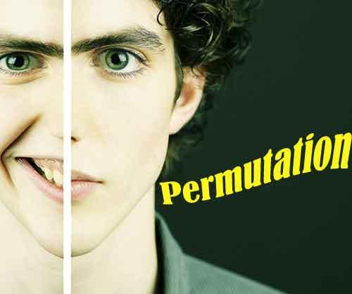 permutation als gestaltungsmittel in der versdichtung